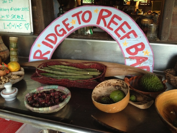 Welcome to Ridge to Reef Farm