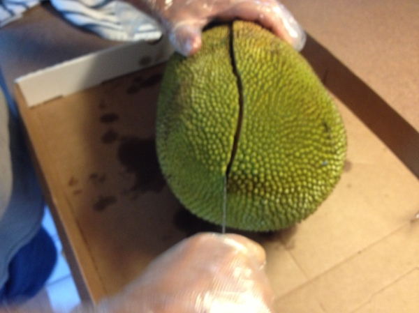 Cutting the jackfruit